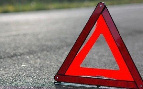 ВСмоленской области разыскивают свидетелей смертоносного ДТП сучастием велосипедиста