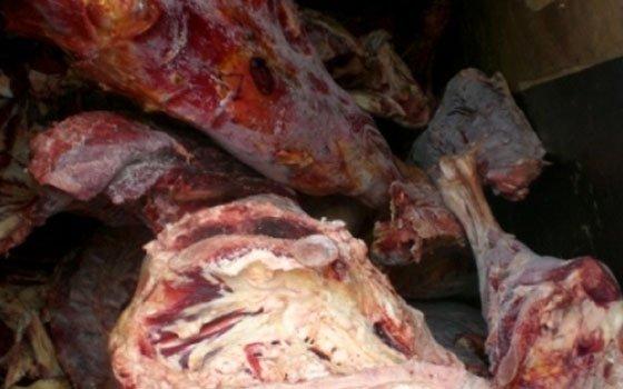 Практически 5 тонн мяса без документов залили зелёнкой под Смоленском