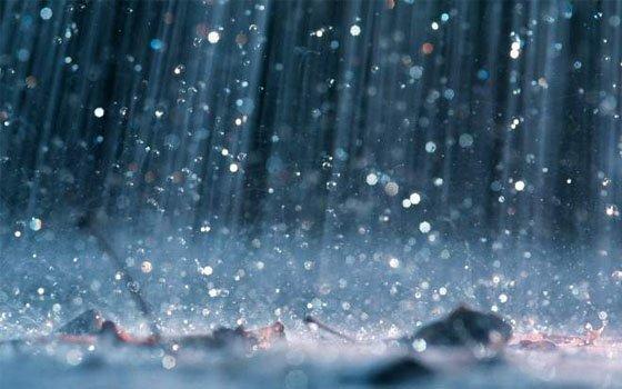 Ввыходные граждан Петербурга ожидают мокрый снег иветер— Весна по-питерски