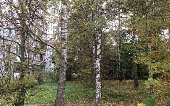 Чтобы построить многоэтажку наЧерняховского, собственник участка мог подделать документы