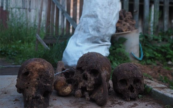 «Копал колодец инашел»: неизвестный могильник обнаружен под Смоленском