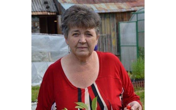 ВСмоленске пенсионерка вышла издома ипропала