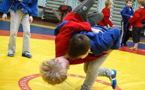 В 10-ти смоленских школах будут преподавать самбо