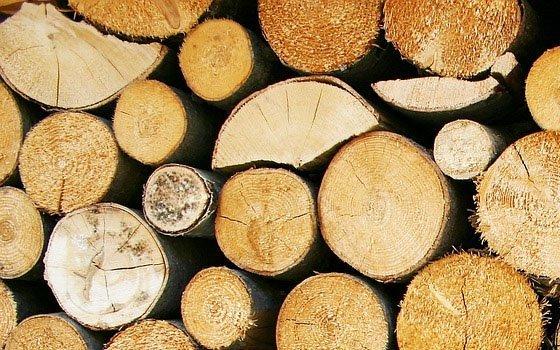 Картинки по запросу кража древесины