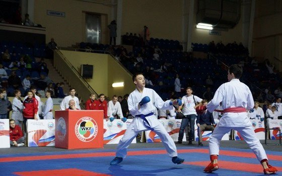 В Смоленске состоялся памятный турнир по каратэ