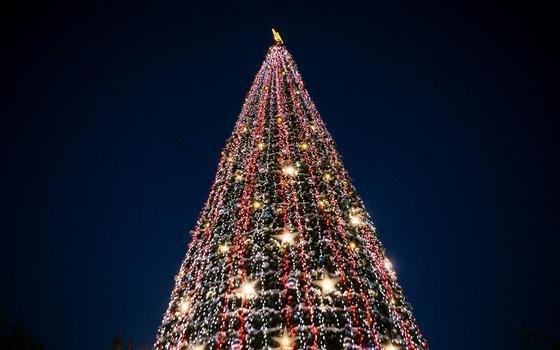 Главная ёлка Смоленска засверкает огнями 21 декабря