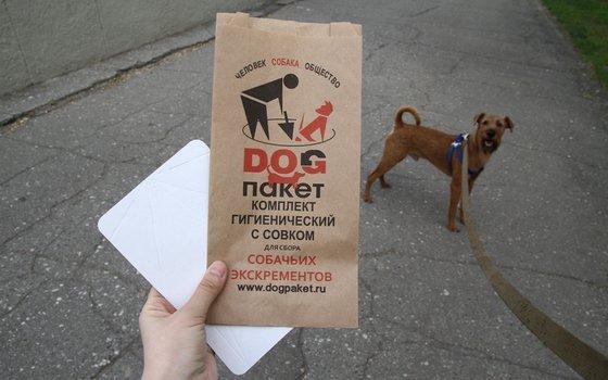 В Смоленске установили урны для уборки за собаками