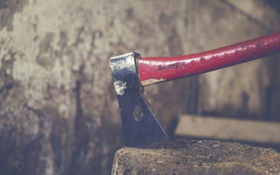 Под Рославлем мужчина в состоянии «белой горячки» отрубил голову сожительнице