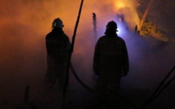 Под Ярцевом во время пожара погибли животные