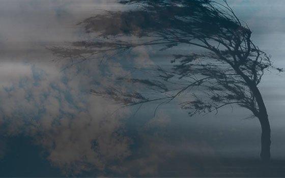 Смолян 13 марта ожидает шквалистый ветер