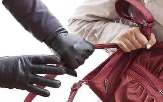 Полиция раскрыла кражу сумки в Вязьме