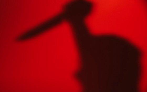 Жительница Смоленска подозревается в убийстве сожителя