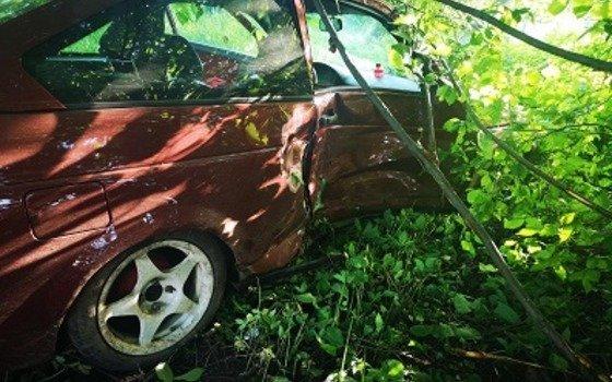 Водитель врезался в дерево в Гагарине и был госпитализирован