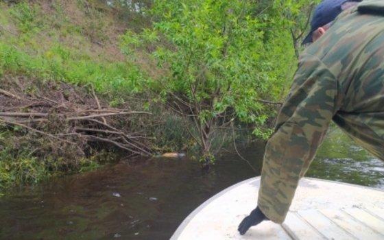 На Смоленщине в реке обнаружили тело пропавшего ребенка