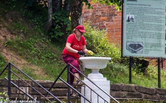 В Смоленске высадили еще 6 тысяч растений